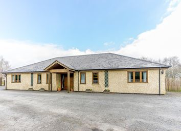 Thumbnail 5 bed detached bungalow for sale in Dolybont, Rhayader
