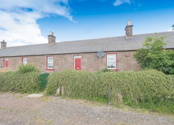Thumbnail 2 bed terraced house to rent in Montrose