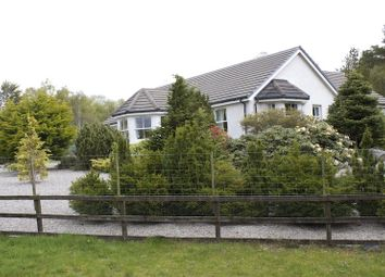 Thumbnail 4 bed bungalow for sale in Spinningdale, Ardgay, Highland