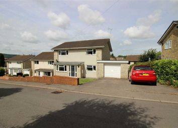 Thumbnail 4 bed detached house to rent in Duchess Road, Osbaston, Monmouth