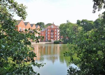 Thumbnail 4 bed flat to rent in Albany Gardens, Colchester