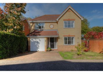 Thumbnail 4 bedroom detached house for sale in Waller Close, Dussindale
