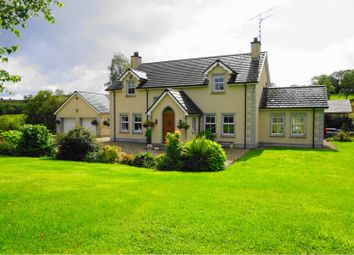 Thumbnail 4 bed detached house for sale in Relagh Road, Omagh