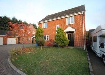 Thumbnail 4 bed detached house to rent in Mosely Court, Norwich