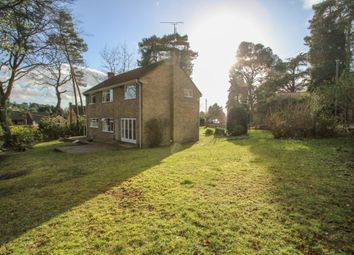 Thumbnail 4 bed detached house to rent in Iberian Way, Camberley
