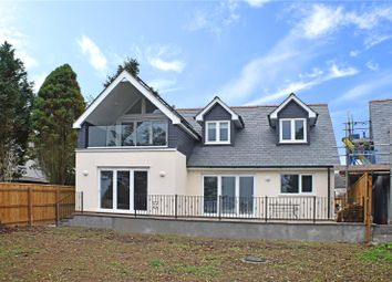 Thumbnail 4 bed detached house for sale in High Bullen, Torrington