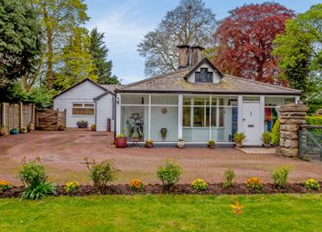 Thumbnail 3 bed detached bungalow for sale in White Lodge, Rossett