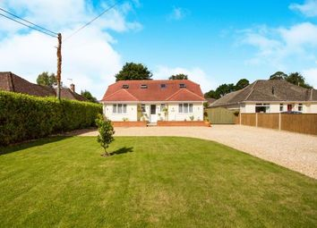 Thumbnail 4 bedroom bungalow for sale in West Parley, Ferndown, Dorset