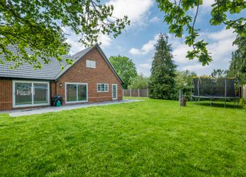 Thumbnail 4 bedroom detached house for sale in Leavenheath, Colchester, Suffolk