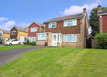 Thumbnail 4 bed detached house for sale in White Oak Drive, Beckenham