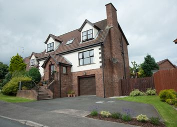 Thumbnail 5 bed detached house for sale in Carsons Road, Ballygowan, Newtownards