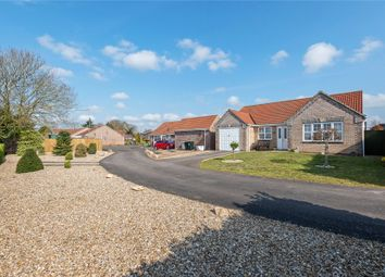Thumbnail 3 bed bungalow for sale in Finch Way, Wragby