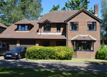 Thumbnail 4 bedroom detached house to rent in Martinsyde, Woking