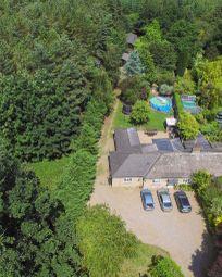 Thumbnail 6 bed semi-detached bungalow for sale in Thetford Road, Santon Downham, Brandon