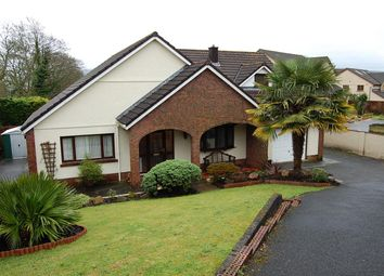 Thumbnail 4 bed property for sale in Penygarn Road, Tycroes, Ammanford