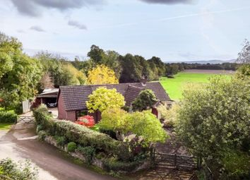 Thumbnail 3 bed bungalow for sale in Crickheath, Oswestry