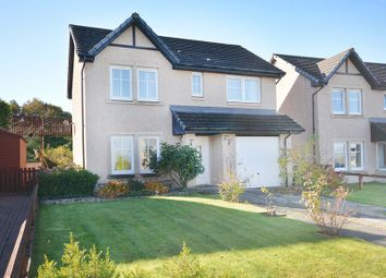 Thumbnail 4 bed detached house for sale in Mcaulay Brae, Plean, Stirling