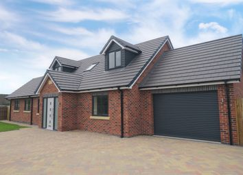 Thumbnail Detached house for sale in Rose Avenue, Ilkeston