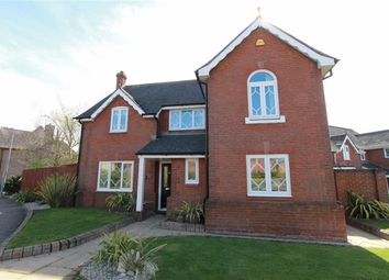 Thumbnail 4 bed detached house for sale in Celeborn Street, Chelmsford, Essex