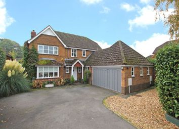 Thumbnail 4 bed detached house for sale in Balmoral Way, Rownhams, Southampton