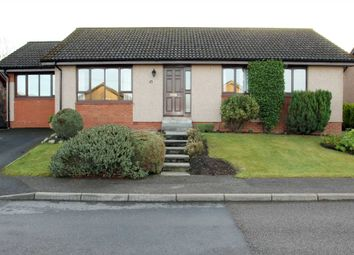 Thumbnail 4 bed detached bungalow for sale in Burn Brae, Westhill, Inverness