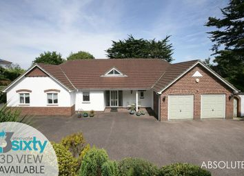 Thumbnail 4 bed detached bungalow for sale in Lydwell Road, Torquay
