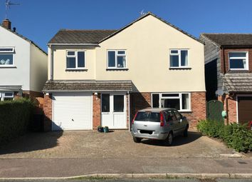Thumbnail 4 bed detached house to rent in Hargrave Avenue, Ipswich, Suffolk