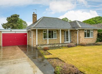 Thumbnail 2 bed detached bungalow for sale in Springfield Road, Upper Poppleton, York