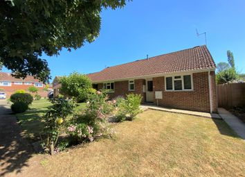 Thumbnail 1 bed semi-detached bungalow to rent in De Lucy Avenue, Alresford
