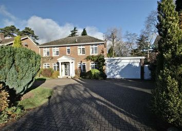 Thumbnail 5 bed detached house for sale in Shootersway Park, Berkhamsted, Hertfordshire