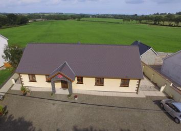 Thumbnail 3 bed bungalow for sale in Oakford, Llanarth