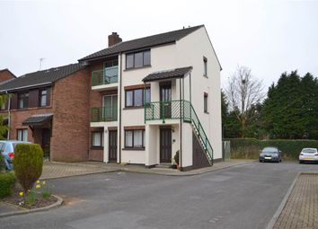 Thumbnail 2 bed flat to rent in 12, Upper Malone Park, Belfast
