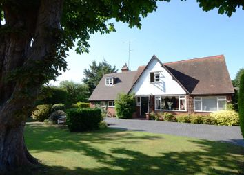 Thumbnail 4 bed detached house to rent in Court Drive, Maidenhead