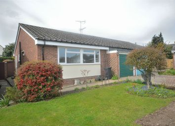 Thumbnail 2 bed semi-detached bungalow to rent in Wethersfield, Braintree, Essex