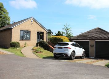 Thumbnail 2 bed bungalow for sale in 16 North Meadow, Ovingham