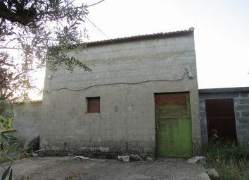 Thumbnail Farm for sale in Palvarinho, Salgueiro Do Campo, Castelo Branco (City), Castelo Branco, Central Portugal