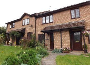 Thumbnail 2 bed property to rent in Basil Close, Swindon