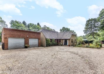 Thumbnail 3 bed detached house for sale in Queens Road, Bisley, Woking
