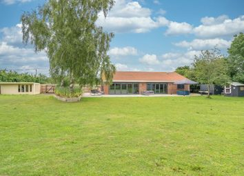 Thumbnail 4 bed bungalow for sale in Harleston Road, Langmere, Diss