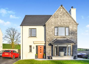 Thumbnail 4 bedroom detached house for sale in Bishops Green, Banbridge