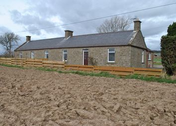 Thumbnail 4 bed detached house to rent in Carnoustie