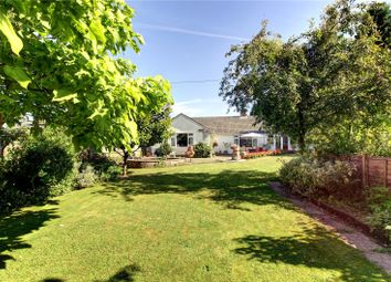 Thumbnail 2 bedroom detached bungalow for sale in Marlborough Road, Pewsey, Wiltshire