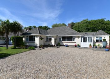 Thumbnail 3 bed detached bungalow for sale in Friars Walk, Barton On Sea, New Milton