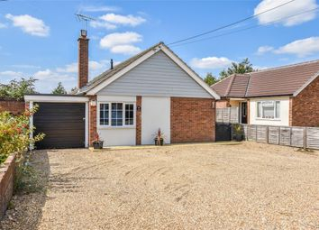 Thumbnail 4 bed detached bungalow for sale in Warren Lane, Stanway, Colchester, Essex