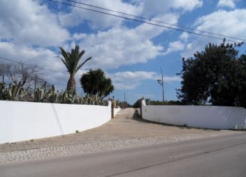 Thumbnail 10 bed farmhouse for sale in Close To Luz De Tavira, Portugal