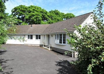 Thumbnail 3 bed bungalow for sale in Barton Common Road, New Milton