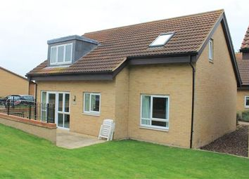 Thumbnail 3 bed bungalow to rent in The Swallows, Patrons Way West, Denham Green