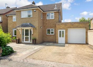 Thumbnail 5 bedroom detached house for sale in Cambridge, Cambridgeshire