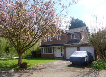 Thumbnail 4 bed property to rent in Summerfields, Sible Hedingham, Halstead