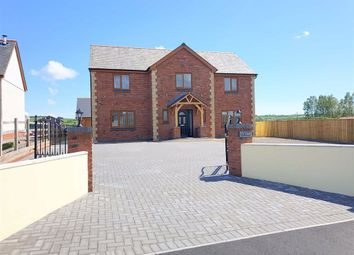 Thumbnail 5 bed detached house for sale in Spring Gardens, Whitland, Carmarthenshire